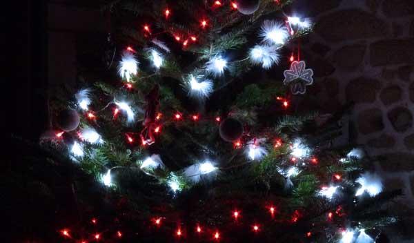 Menu de fête, Recette Noël et nouvel an